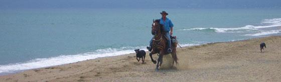 Beach - Rando et Chariot